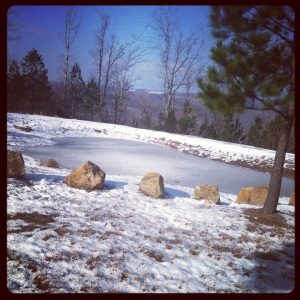 A beautiful picture of the frozen pond where we were skipping rocks.