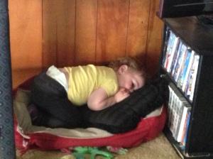 She was so sleep she would lay down anywhere!