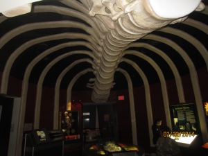 inside a giant rib cage