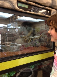 Making new friends at the pet store!