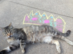 Sassy cat wanted to wear a crown.