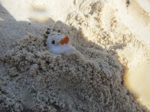 Even Olaf enjoyed the white sand